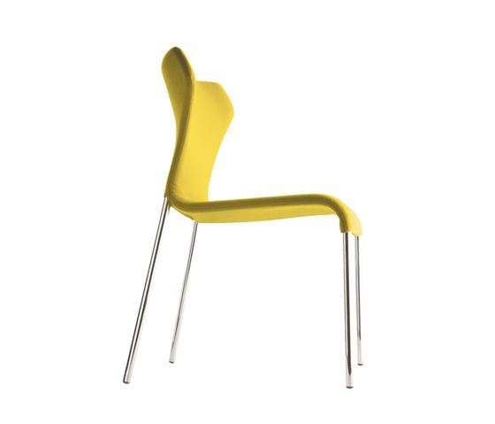 Papilio by B&B Italia | Restaurant chairs