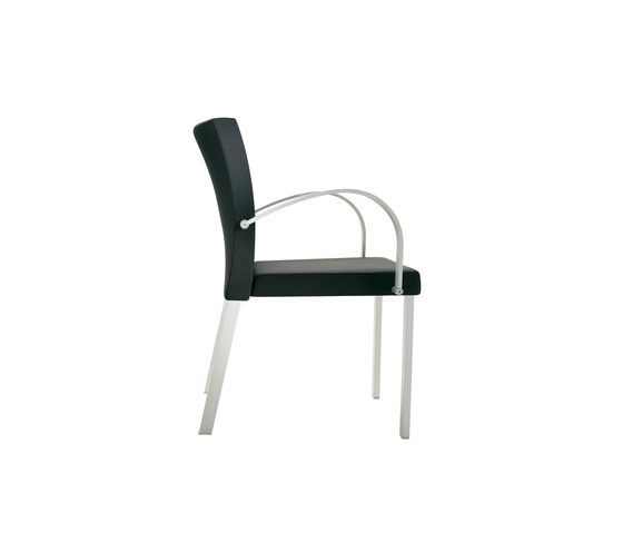 Gallery Arm Chair by Segis | Multipurpose chairs