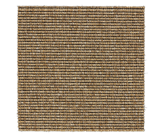 Alfa | Golden 660005 by Kasthall | Wall-to-wall carpets