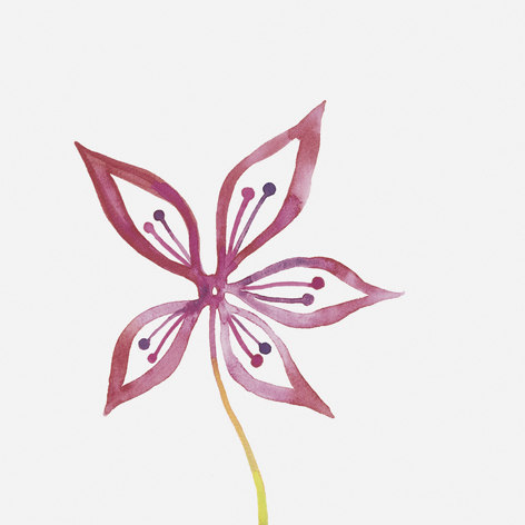 Primavera Colore 1 by Ceramica Bardelli | Ceramic tiles