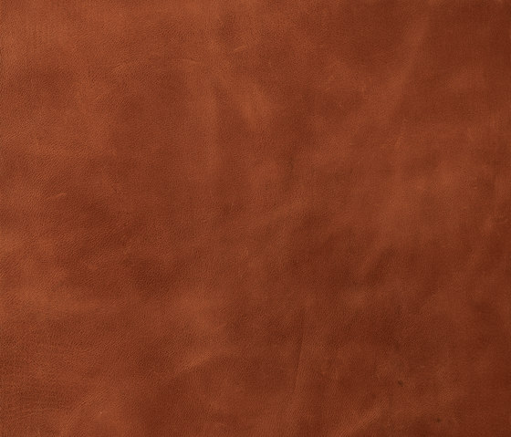 Lifestile mahogany de Nextep Leathers | Natural leather wall tiles