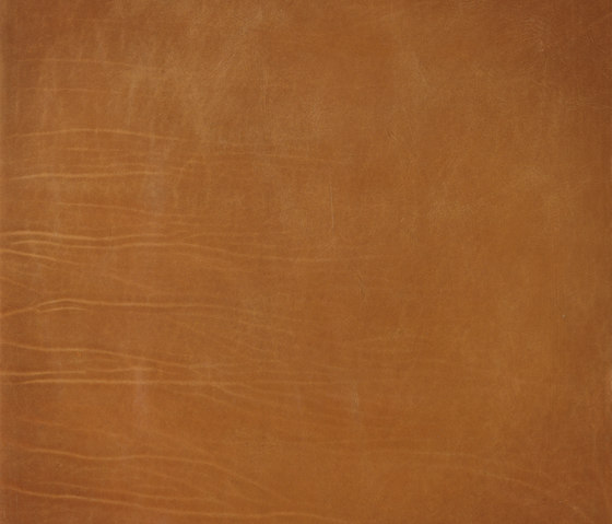 Lifestile amber by Nextep Leathers | Natural leather wall tiles