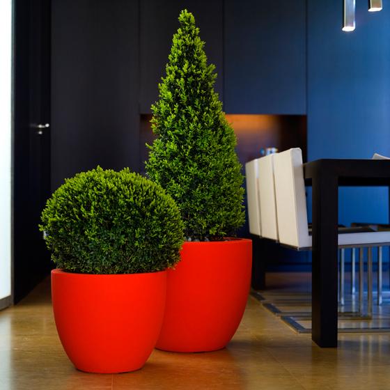 Fang Cuenco by Vondom | Flowerpots / Planters