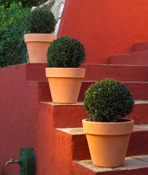 Fang maceta by Vondom | Flowerpots / Planters