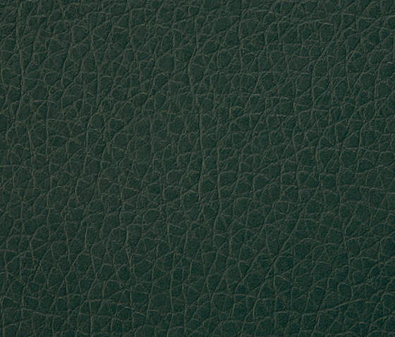 Kawa Deus® 128 microleather by BUVETEX INT. | Outdoor upholstery fabrics