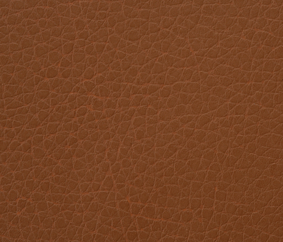 Kawa Deus® 137 microleather by BUVETEX INT. | Outdoor upholstery fabrics