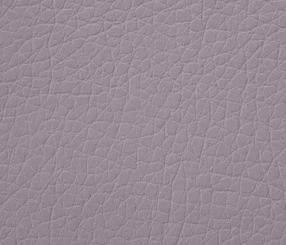 Kawa Deus® 146 microleather by BUVETEX INT. | Outdoor upholstery fabrics