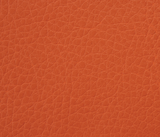 Kawa Deus® 228 microleather by BUVETEX INT. | Outdoor upholstery fabrics