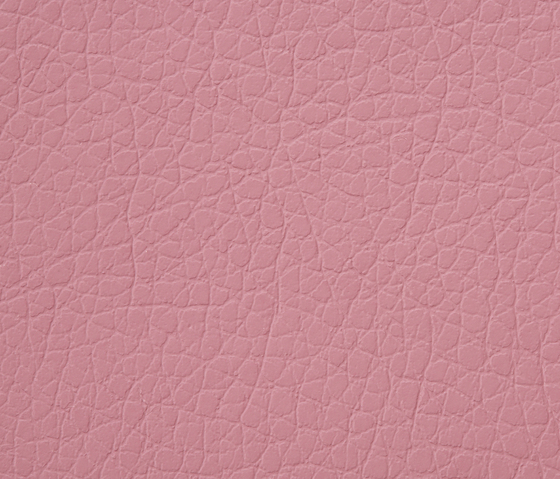 Kawa Deus® 223 microleather by BUVETEX INT. | Outdoor upholstery fabrics