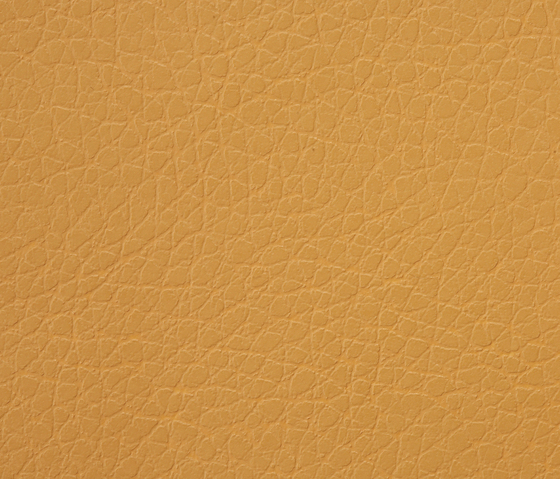 Kawa Deus® 242 microleather by BUVETEX INT. | Outdoor upholstery fabrics