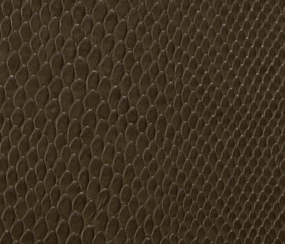 Phython 0006 PU leather by BUVETEX INT. | Outdoor upholstery fabrics