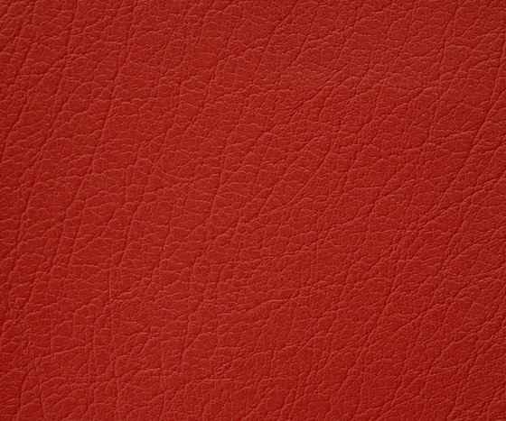 Mercure 25 PU leather by BUVETEX INT. | Outdoor upholstery fabrics