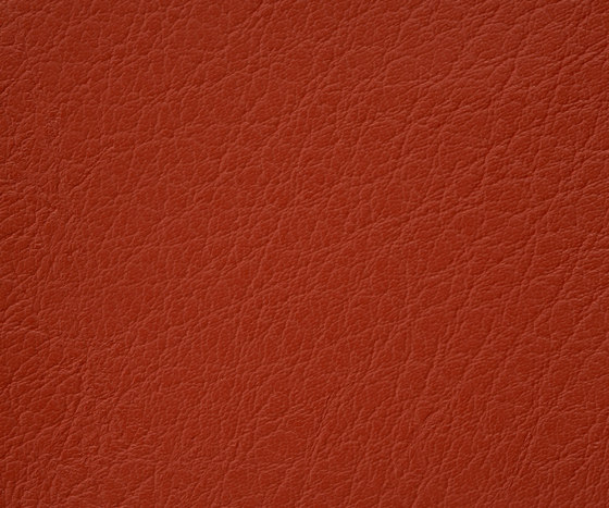 Mercure 26 PU leather by BUVETEX INT. | Outdoor upholstery fabrics