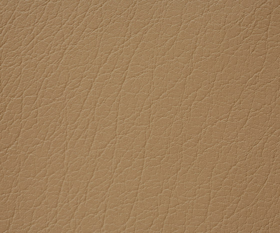 Mercure 31 PU leather by BUVETEX INT.   Outdoor upholstery fabrics