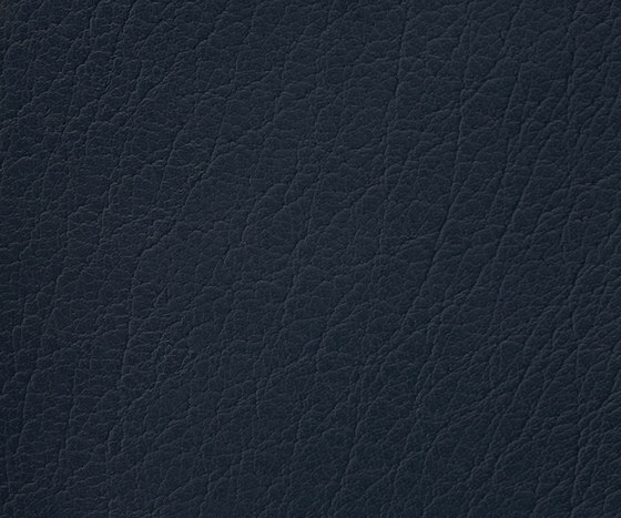 Mercure 42 PU leather by BUVETEX INT. | Outdoor upholstery fabrics
