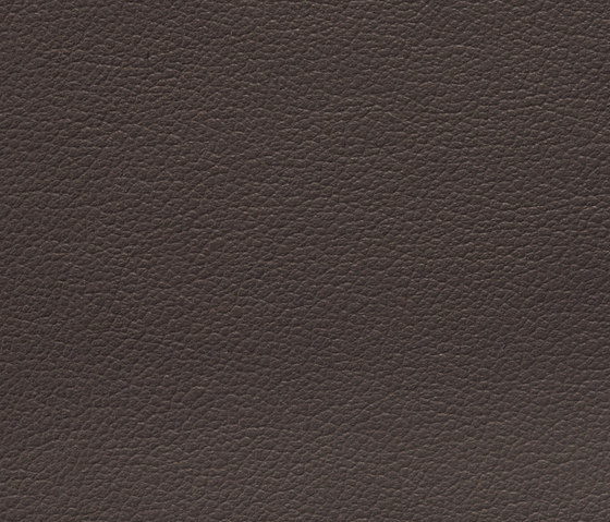 Regent 0020 PU leather by BUVETEX INT. | Outdoor upholstery fabrics