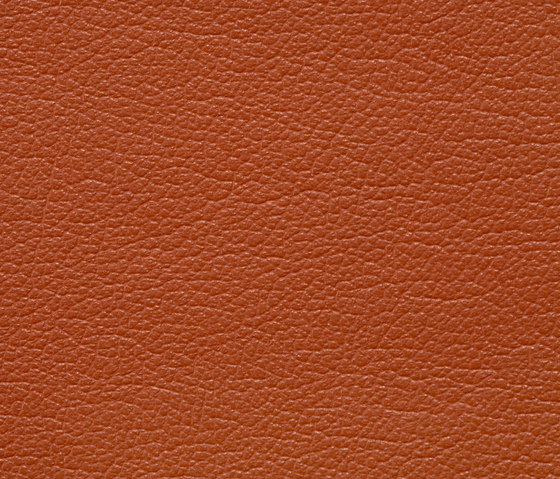 Regent 0035 PU leather by BUVETEX INT. | Outdoor upholstery fabrics