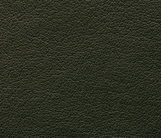 Regent 0317 PU leather di BUVETEX INT. | Tappezzeria per esterni