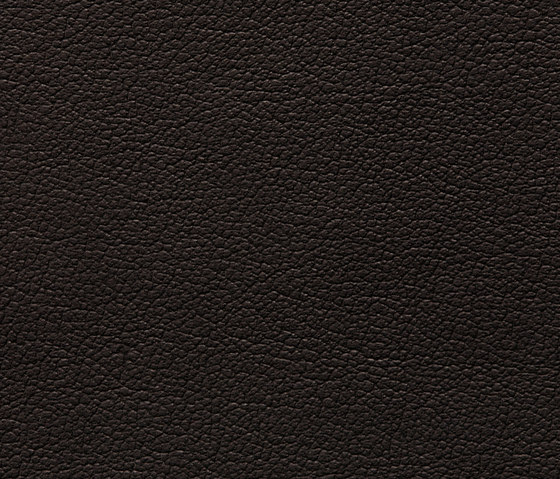 Regent 0701 PU leather by BUVETEX INT. | Outdoor upholstery fabrics