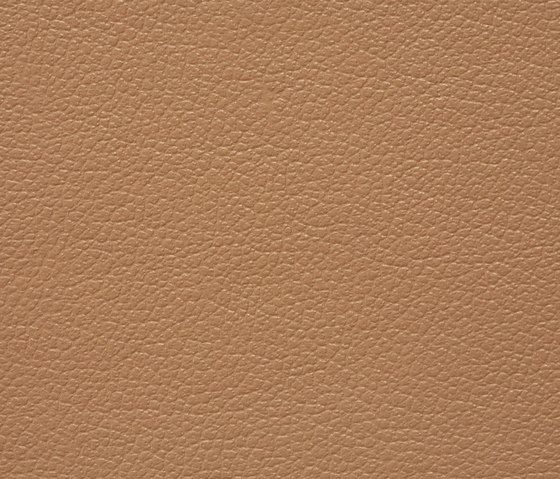 Regent 0718 PU leather by BUVETEX INT. | Outdoor upholstery fabrics