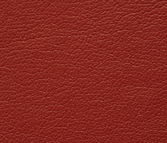 Regent 0036 PU leather by BUVETEX INT. | Outdoor upholstery fabrics