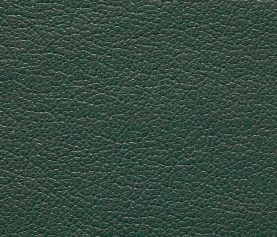 Regent 6061 PU leather by BUVETEX INT. | Outdoor upholstery fabrics