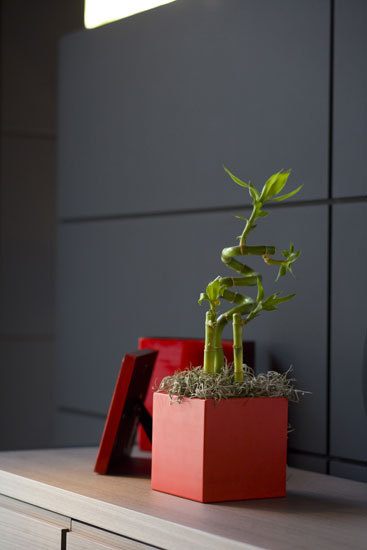 Nano Cubo by Vondom | Flowerpots / Planters