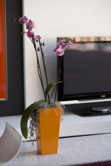 Nano Cono cuadrado by Vondom   Flowerpots / Planters