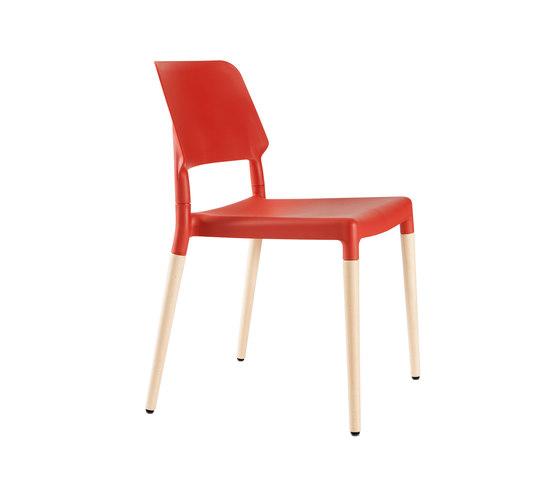 Belloch chair de Santa & Cole | Sillas multiusos