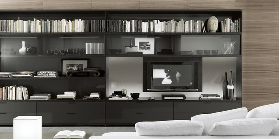 Cartesia large by Rimadesio | Wall storage systems