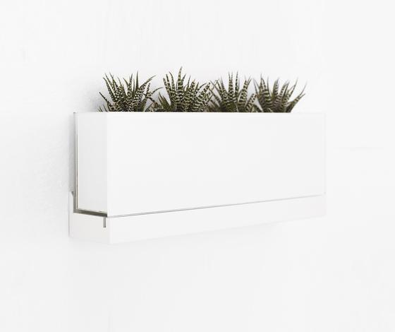 Front Plant FR2 50, FRGLV250 von Karl Andersson | Pflanzen-Halter / -Ständer