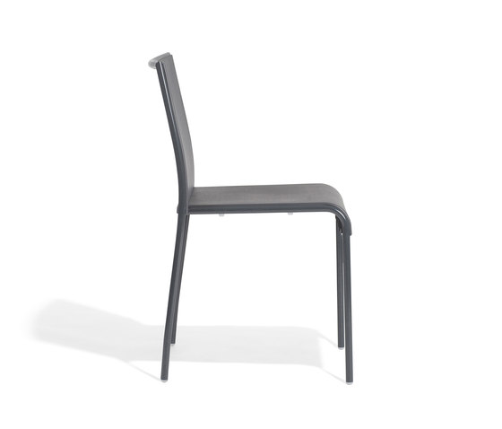 Alin Chair by Accademia | Restaurant chairs