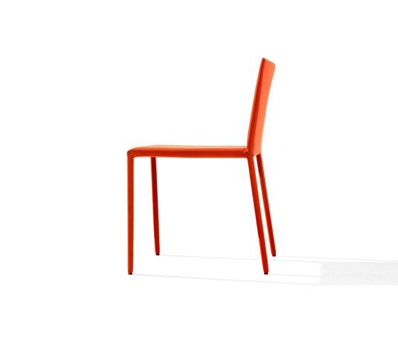 Norma | 1708 von Arper | Stühle