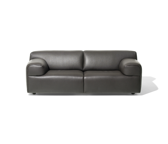 DS 820 de de Sede | Sofás lounge