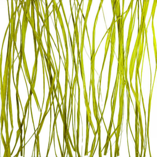 Seaweed glass by 3form Europe | Decorative glass