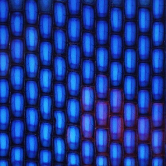 Cast Polymer Panel AO/MUB de Panelite   Panneaux