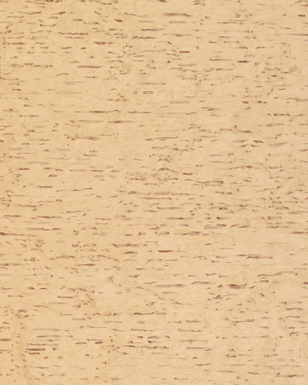 63804 Sierra Birch Figured by Treefrog Veneer | Wood veneers