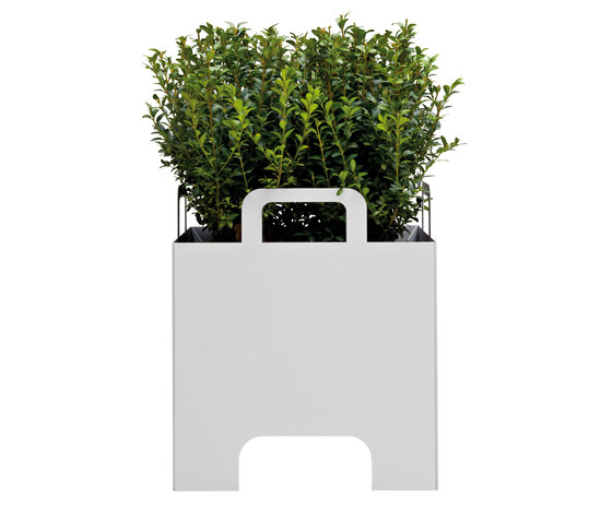 Mercato by FLORA | Flowerpots / Planters