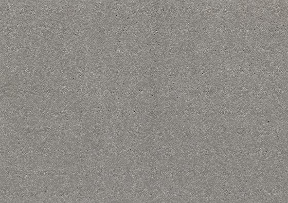 fibreC Ferro FE silbergrau von Rieder | Fassadenbekleidungen
