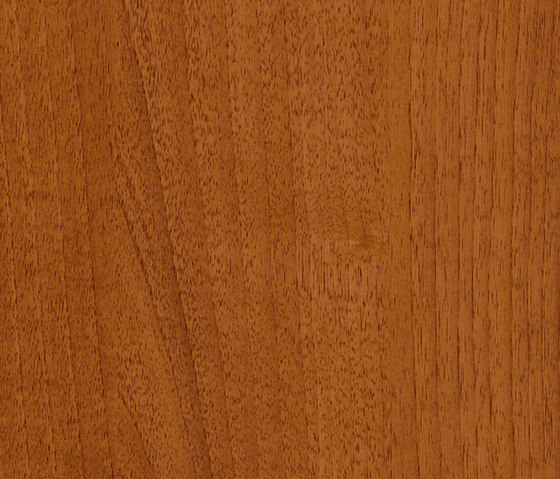 skai Folie für die Außenanwendung Walnuss amaretto von Hornschuch | Folien