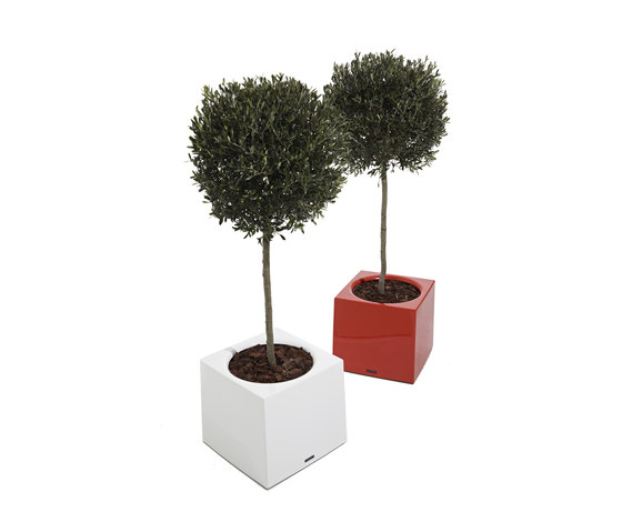 Alea by extremis | Flowerpots / Planters