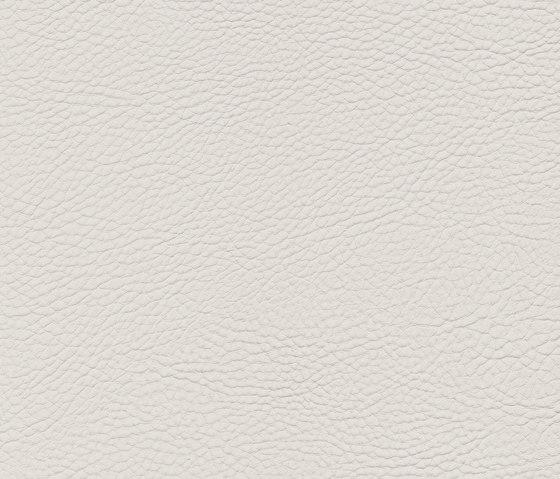 skai Neptun Pescara by Hornschuch | Faux leather
