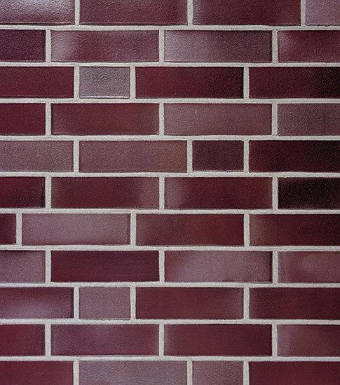Neumarkt blue-red flashed smooth by Röben Tonbaustoffe GmbH | Facade bricks / Facing bricks