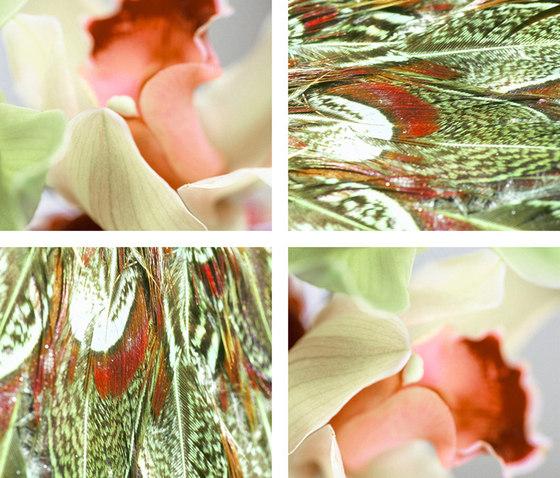 Lis de Plumes by tela-design | Sound absorbing wall art