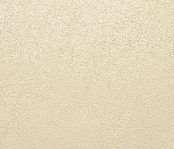 skai Evida nutmeg by Hornschuch | Faux leather