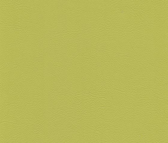 skai Evida lime by Hornschuch | Faux leather