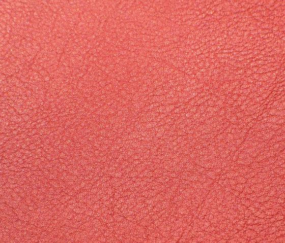 skai Evida fire by Hornschuch | Faux leather