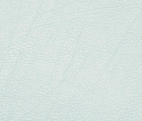 skai Evida lightgrey by Hornschuch | Faux leather