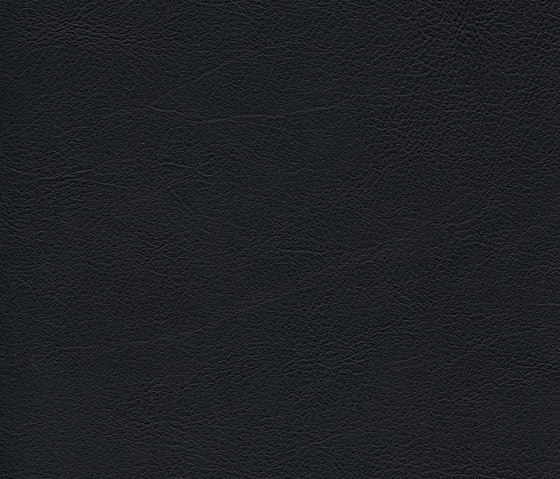 skai Evida black de Hornschuch | Similicuir