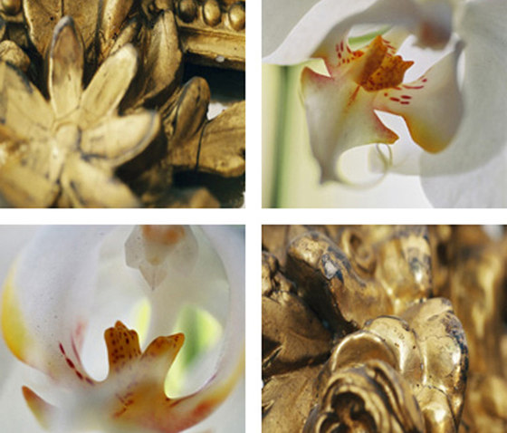 Gold Framing Orchids by tela-design | Synthetic films